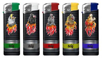 BRIG Fire